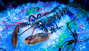 Belon At Banyan Tree Macau Presents Blue Lobster Menu